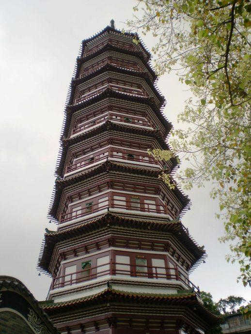 things to do in Guangzhou banyan