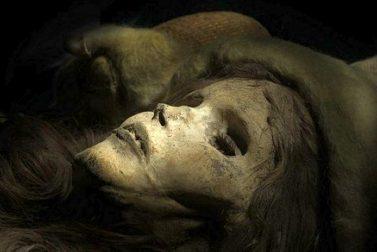 taklamak mummia